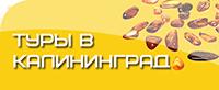 Туры по России: Калининград